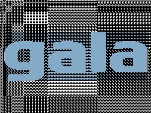 galaok-300x225